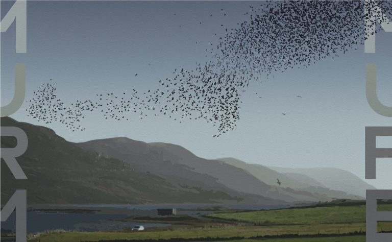 Read more about the article Murmuration